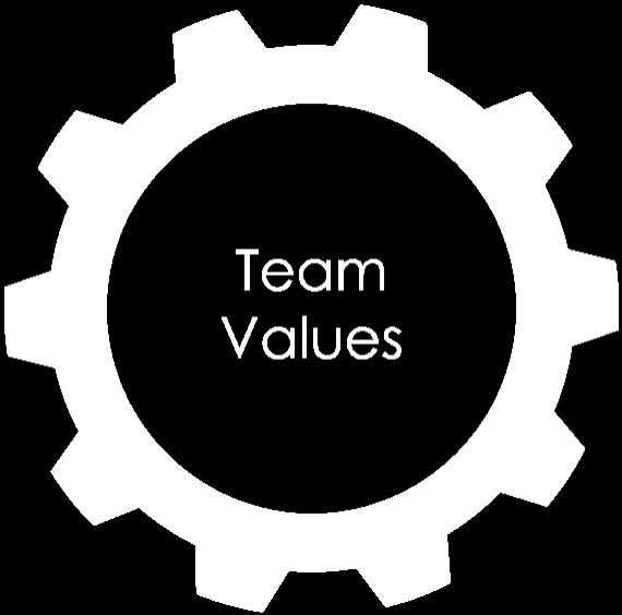 team values icon